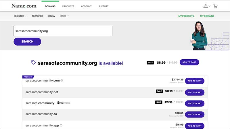 Name.com domain search